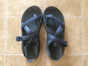 798ba39da322 Field Testing the Chaco Z1   Chaco Z2 Sandals  Which Is Right for You