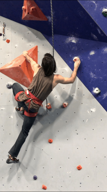 Toproping in a climbing gym.