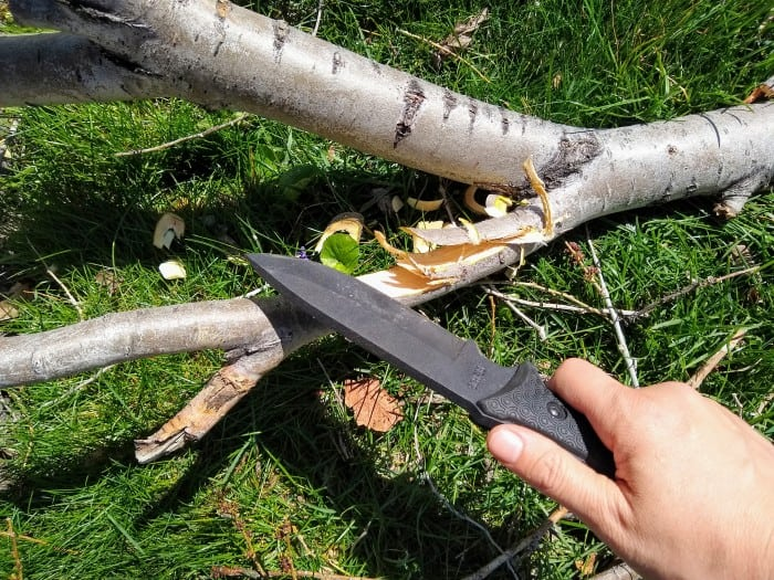 Chopping branches with the Schrade SCHF 36 Frontier.