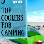 5 top coolers for camping pin